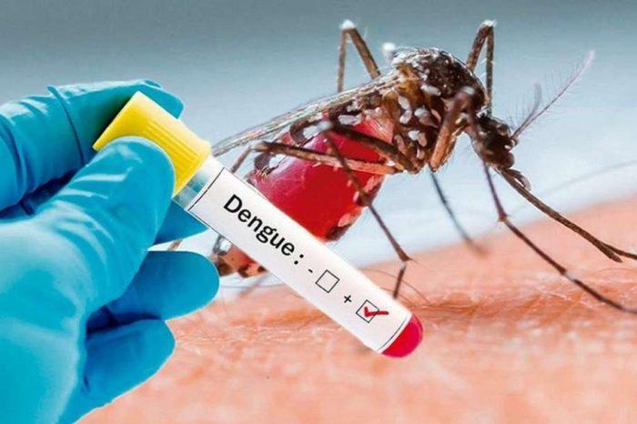 como funciona el test nacional que detecta el dengue