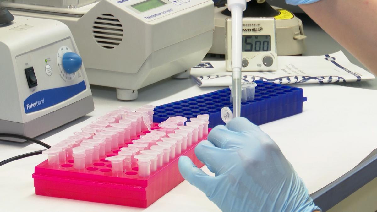 Por que vamos a necesitar mas de una vacuna contra el coronavirus