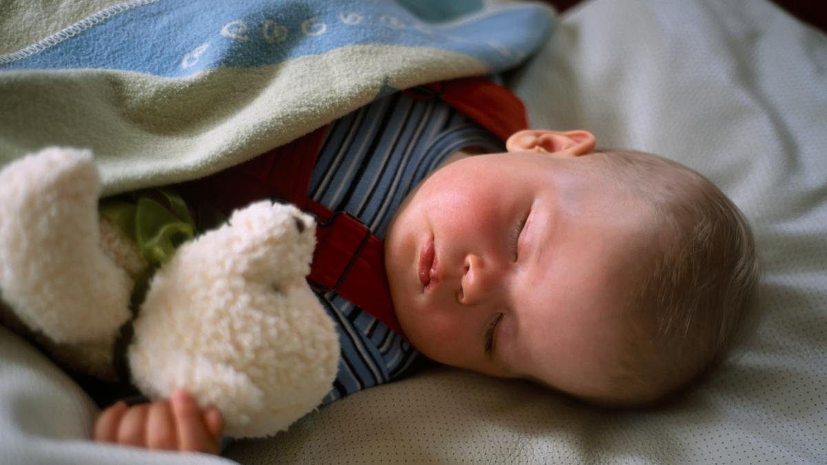 Objetos de apego: ¿por que son tan importantes para el niño? ¿Que funcion juegan en el desarrollo del bebe?
