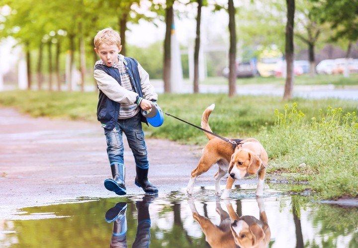Mascotas y niños: los beneficios de tener un perro en casa desde chicos
