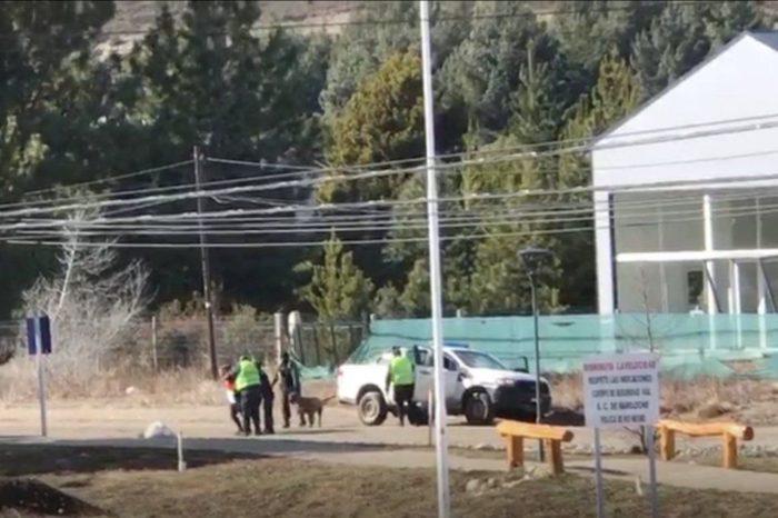 Bariloche: saco a pasear al perro y la detuvieron en un violento operativo