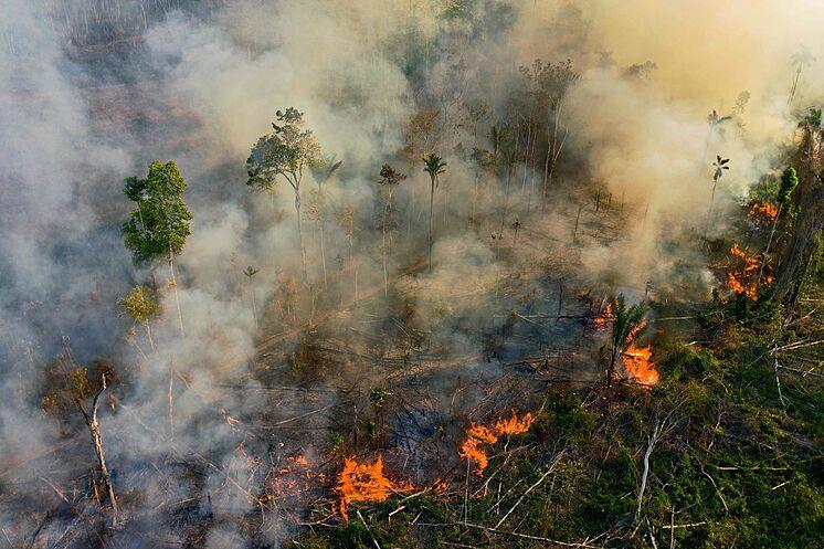 Un fuego en el Amazonas fotografiado el pasado 15 de agosto.
