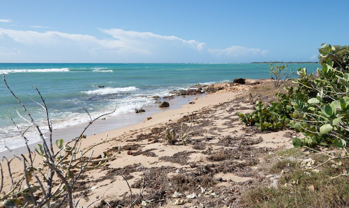 Denuncian a mas de una decena de bañistas en varias playas de Guanica por violar la orden ejecutiva
