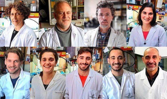 Un nuevo test serologico argentino mide otro anticuerpo contra el coronavirus