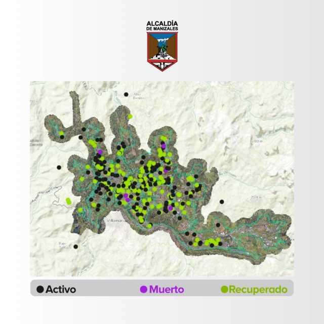 Georreferenciacion y monitoreo, estrategias de la Secretaria de Salud de Manizales para el control de la covid-19