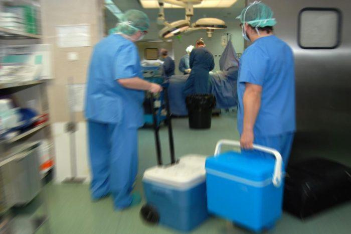 España, lider en donacion de organos, aporta el 6% de los donantes del mundo
