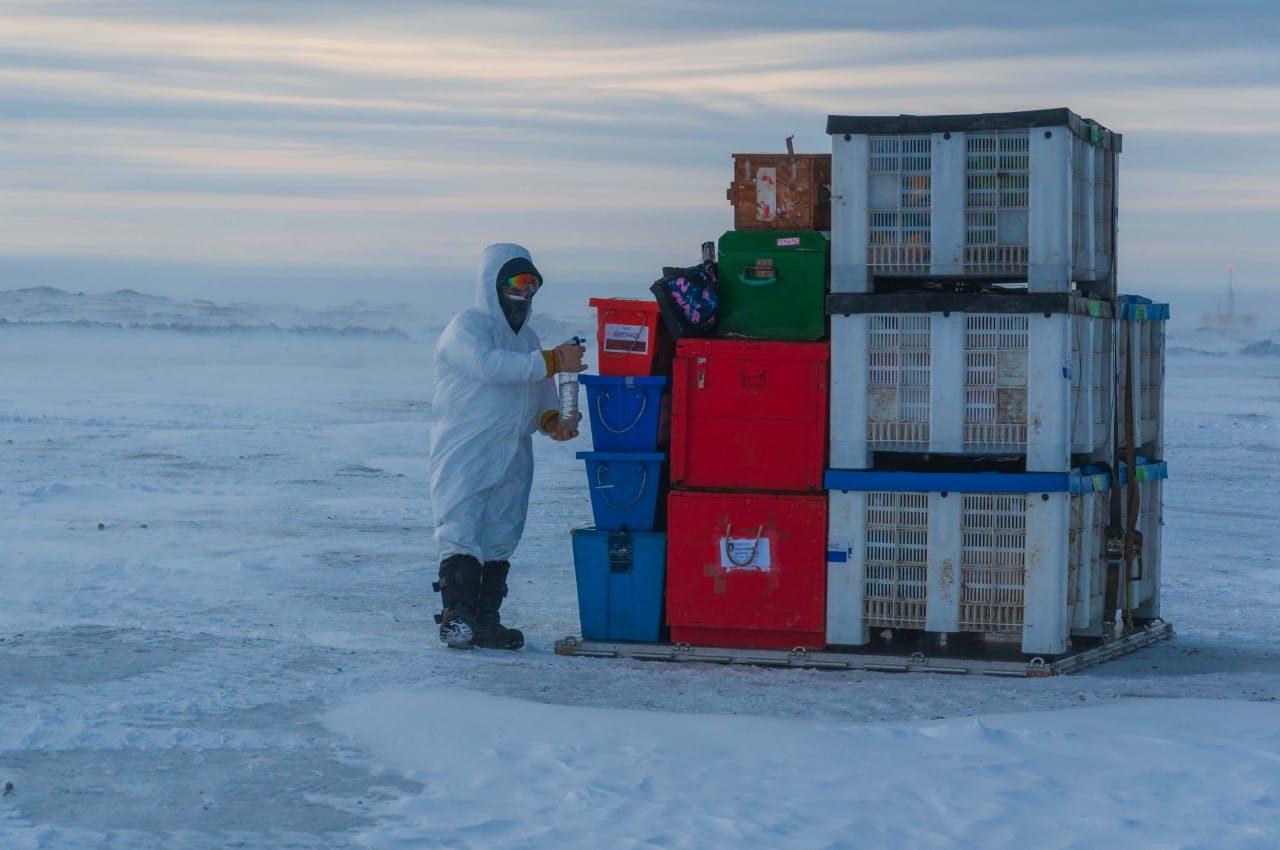Las bases argentinas en la Antartida toman todos los recaudos para evitar contagios de coronavirus