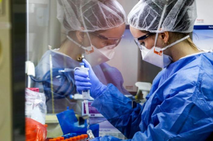 Descubren un componente de anticuerpo que neutraliza al coronavirus