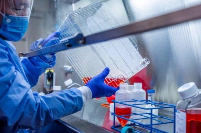 Cientificos descubren un anticuerpo que neutraliza al COVID-19