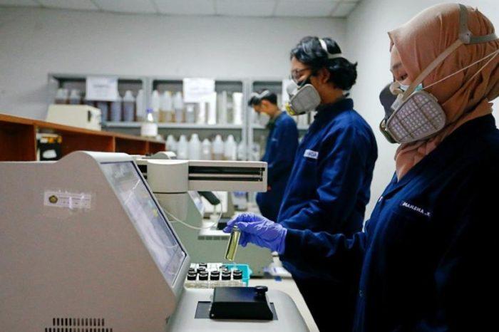 En Indonesia descubrieron mutacion del coronavirus, que podria ser 10 veces mas peligrosa