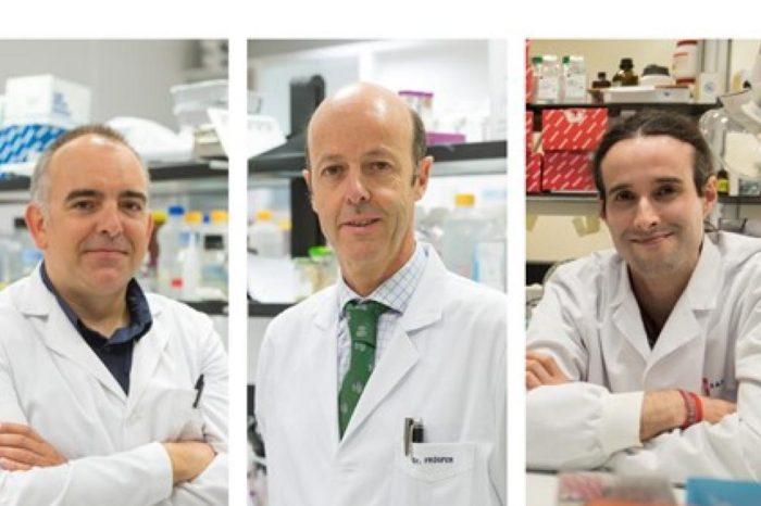 Cientificos españoles descifran el epigenoma completo del mieloma multiple, un agresivo cancer de sangre