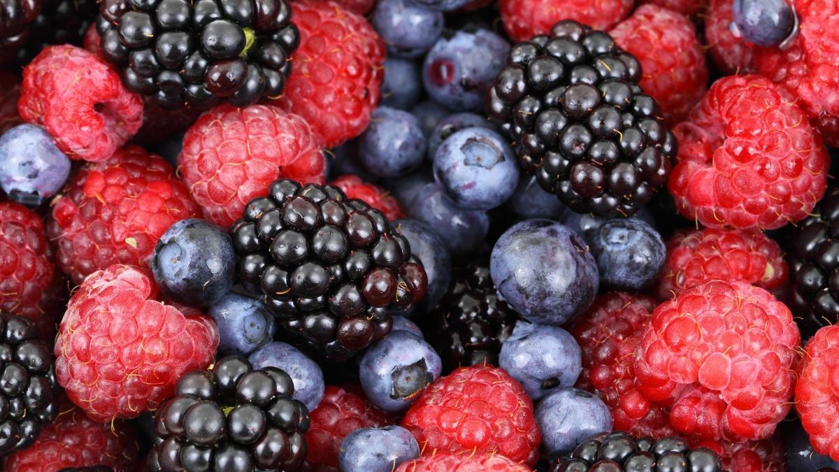 ¿Que cantidad de arandanos tenemos que comer al dia?