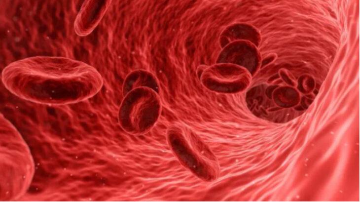 Descubren el mecanismo que provoca la micro-trombosis pulmonar del coronavirus