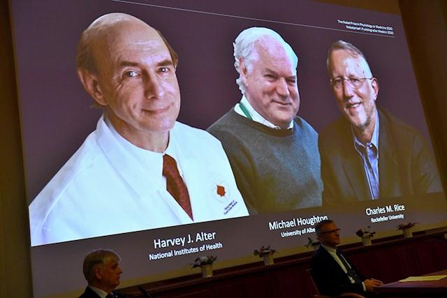 Un Nobel de Medicina para tres virologos que descubrieron la hepatitis C