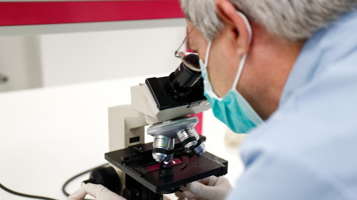 Descubren dos anticuerpos superpotentes que bloquean la entrada del coronavirus en las celulas