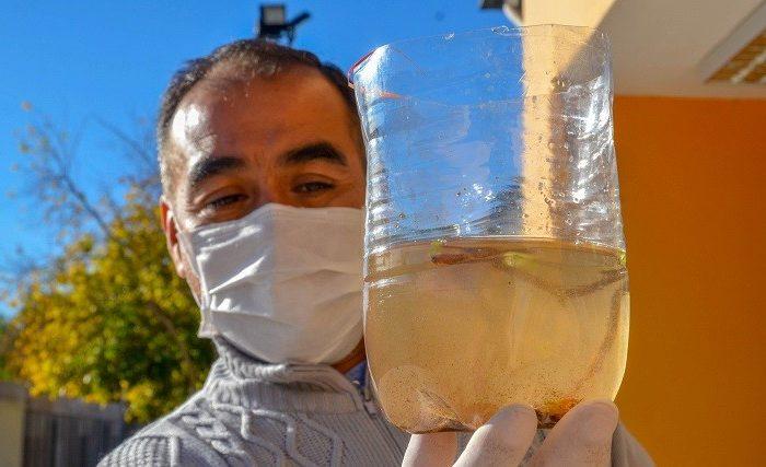 Recomendaciones para evitar la propagacion del mosquito Aedes aegypti en los cementerios.