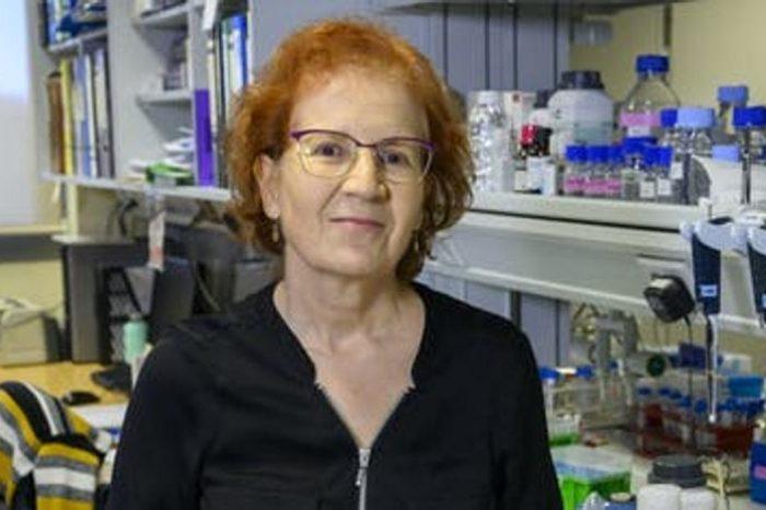 «La hosteleria es uno de los sitios mas peligrosos», sostiene la virologa Maria del Val
