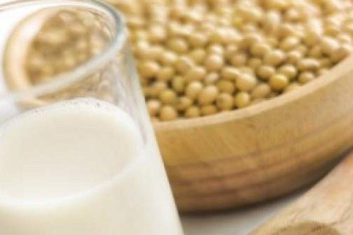Bebidas vegetales de cereales, frutos secos, coco o soja: ¿cuales son mas y menos recomendables?