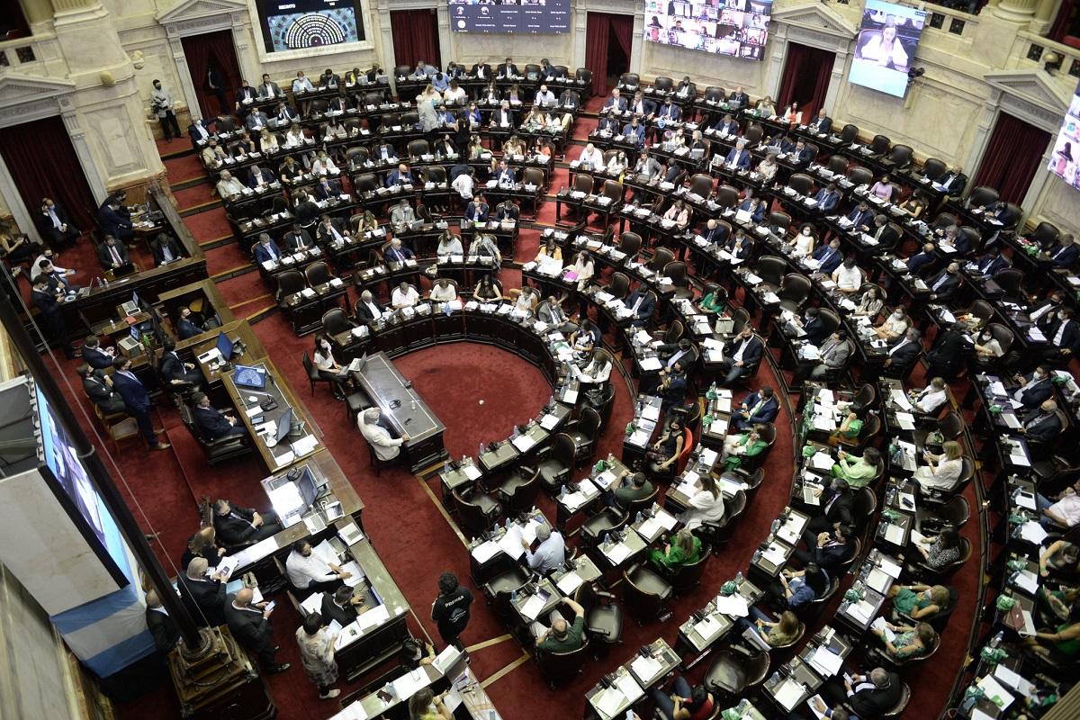 """Diputados dio medio sancion al """"Programa de los Mil Dias"""""""