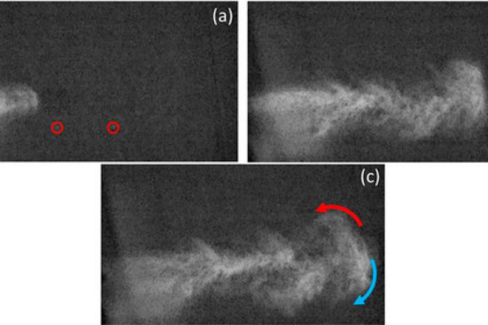 """Los estornudos son """"mini bombas atomicas"""" que explotan a mas de dos metros, segun la ciencia"""