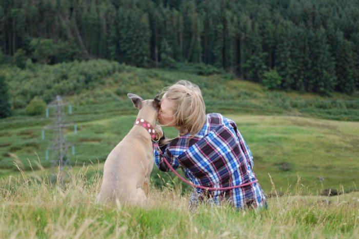Como pueden ayudar los perros a mitigar los efectos de la ansiedad y la depresion en las personas