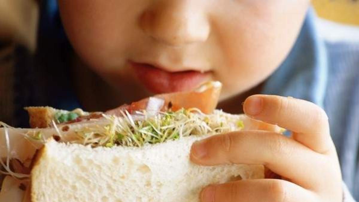 Dioxinas en la alimentacion: ¿cuales son los riesgos para la salud? ¿Que alimentos contienen estas sustancias toxicas?