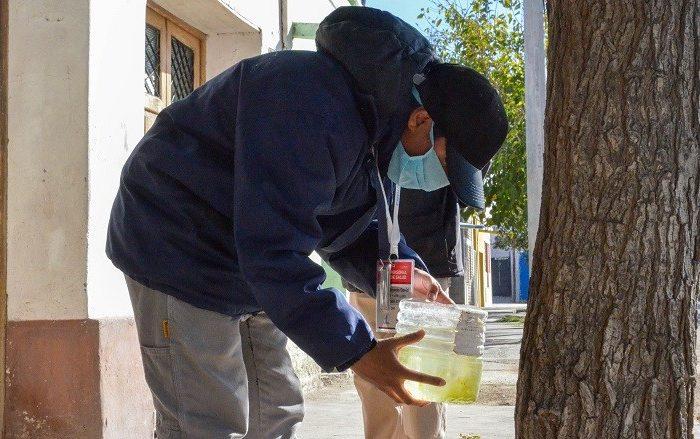 Segui estas acciones para eliminar los criaderos de mosquitos en epocas de lluvia
