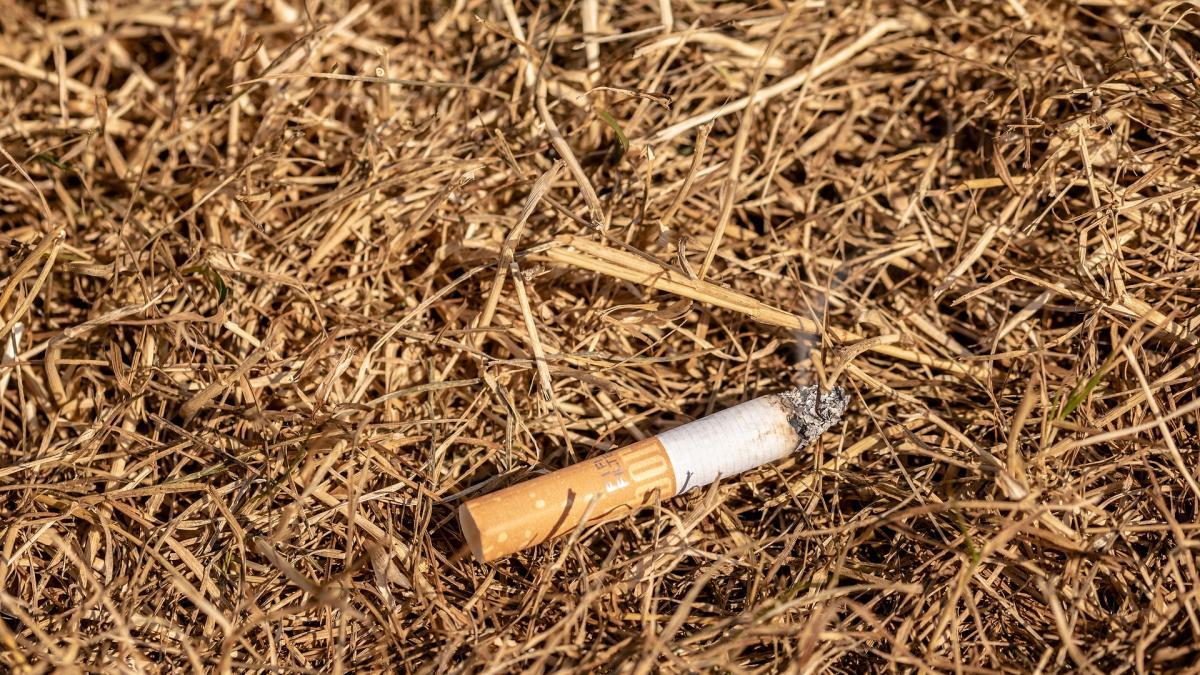 ¿No te atreves a dejar de fumar por miedo a engordar? Consejos para evitar sustituir los cigarrillos por comida
