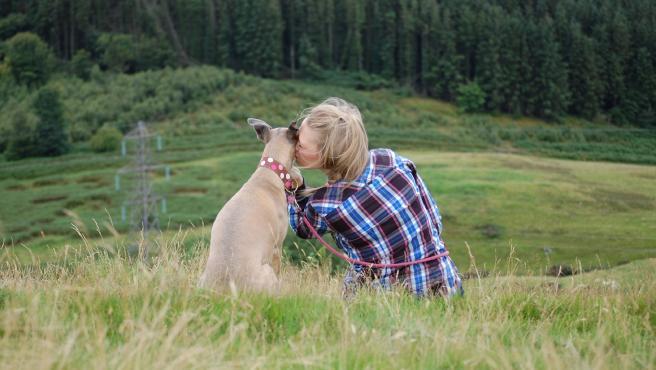 ¿Tu perro ladra a otros perros? Descubre cuales pueden ser los motivos y como corregir esta conducta