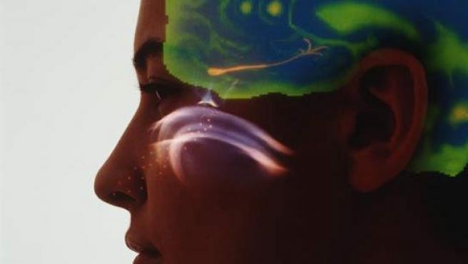 La perdida del olfato y del gusto por la Covid puede durar hasta cinco meses despues de la infeccion