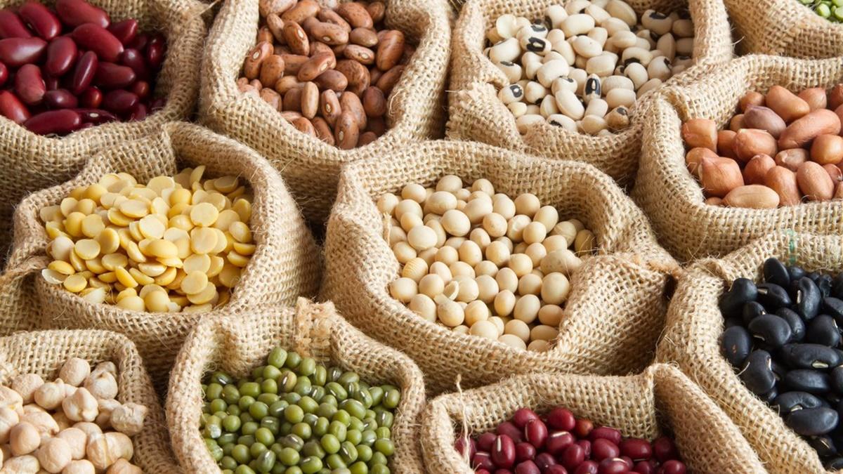 Dia Mundial de las legumbres: ¿Cual es su importancia nutricional?