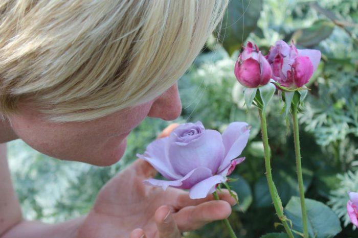 Covid-19: Asi es el entrenamiento que proponen los expertos para recuperar el olfato