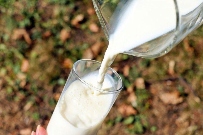 Leche cruda o pasteurizada: ¿cual es mas saludable?