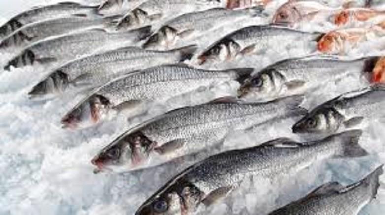 Salud Publica controlara a comercios y vendedores ambulantes de pescado