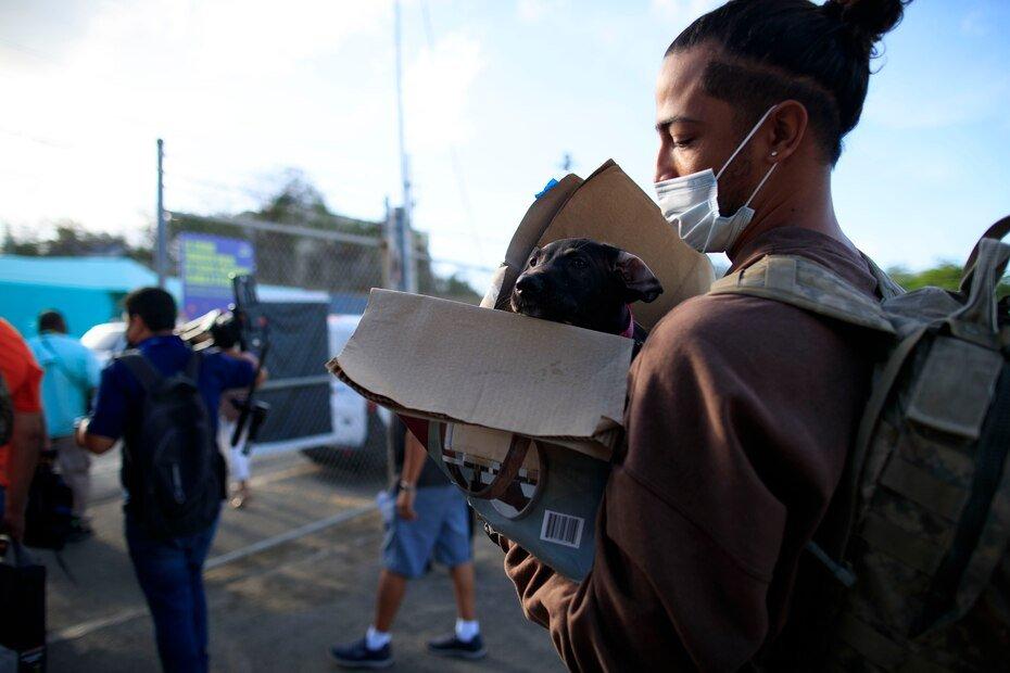 Un residente de Vieques regreso a la isla municipio junto con su mascota.