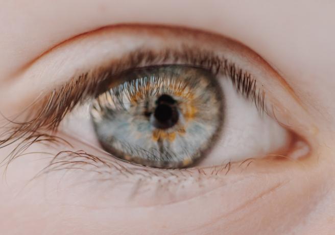 Lenstore: lentillas de todas las marcas al mejor precio