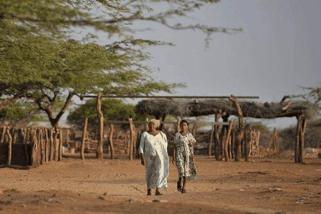 Comunidad wayuu pide ser priorizada en vacunacion contra COVID-19