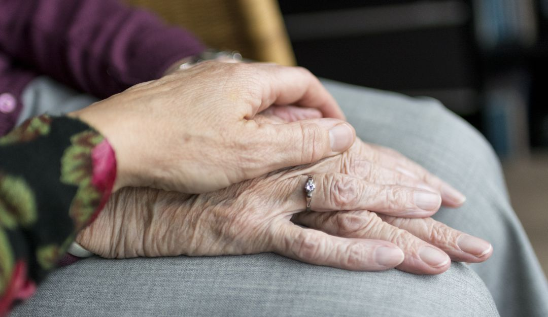 Estudio revela un mecanismo para eliminar celulas envejecidas