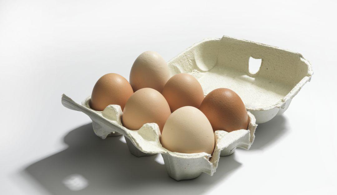 ¿Es malo comer huevo todos los dias? Expertos responden