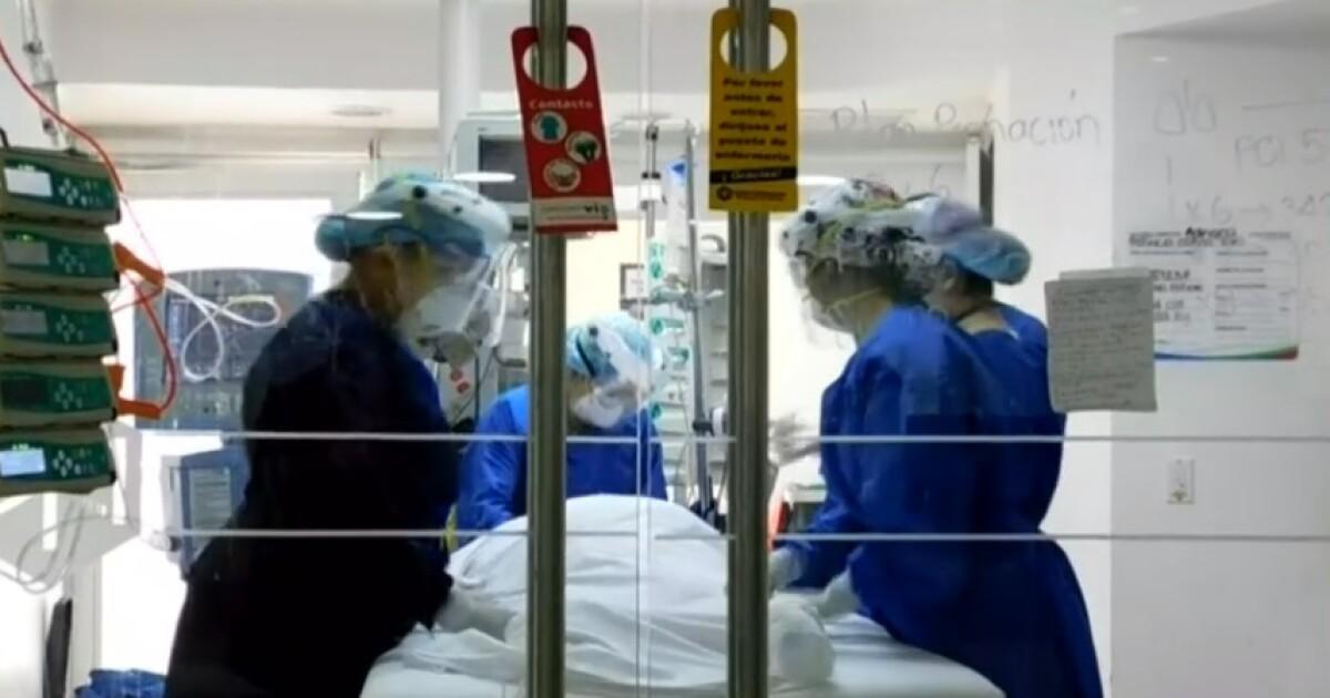 Son 11 los cientificos colombianos que trabajan por crear la vacuna universal contra el COVID-19