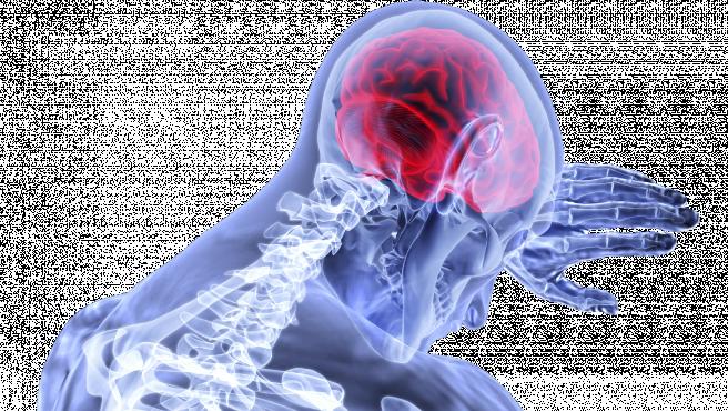 Representacion del cerebro.
