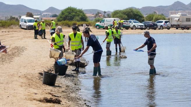 Cartagena apoya la declaración de Emergencia del Mar Menor para conseguir inversiones contra los vertidos