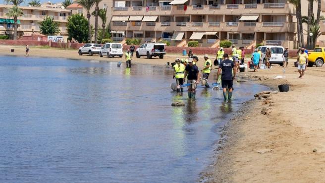 ¿Es seguro bañarse en el Mar Menor? Los expertos dicen que sí... pero con matices
